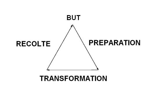 Les 3 phases du processus de transfomation